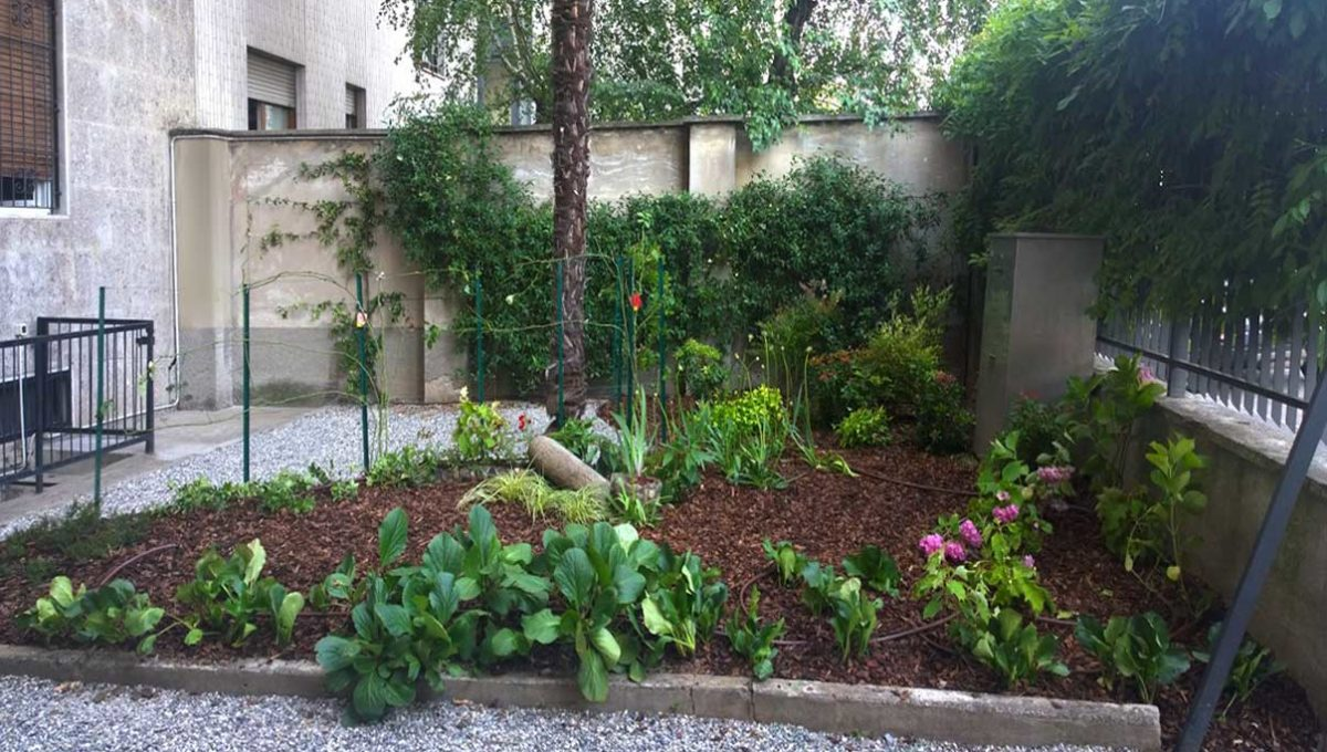 Zum-giardino